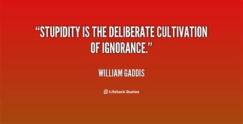 quotes  stupidity quotesgram