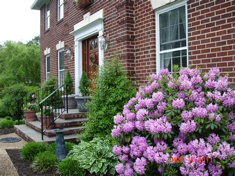 front landscaping plants landscaping plants for front of house