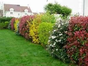 Comment Tailler Une Haie De Laurier : accueil p pini res d 39 evrecy jardinerie pepinieres ~ Melissatoandfro.com Idées de Décoration