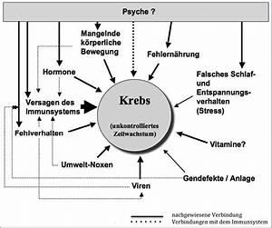 Medikamente Berechnen : psyche und k rper tschuschke psychotherapie wissenschaft ~ Themetempest.com Abrechnung