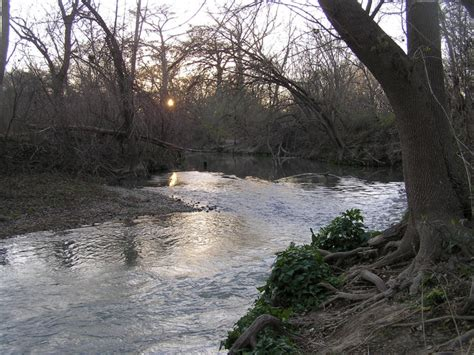 medina river paddling rootsrated