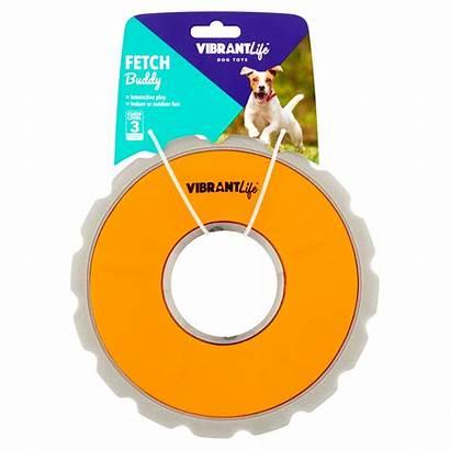 Vibrant Dog Fetch Disc Toy Buddy Level