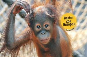 Rostock Zoo Preise : zoo rostock ~ A.2002-acura-tl-radio.info Haus und Dekorationen