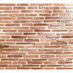 Enduit Imitation Pierre Leroy Merlin : parement pierre interieur leroy merlin beau collection ~ Melissatoandfro.com Idées de Décoration