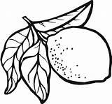 Lemon Coloring Fruit Printable Leaf Coloringsky Sky Colour Meringue Getdrawings Getcolorings sketch template