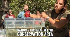 Little Tennessee River Native Fish Conservation Area