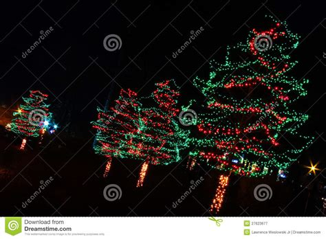 christmas lights red and green lights and green trees stock image image 27623677