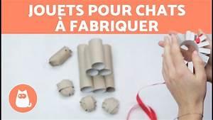 Jouets Pour Chats D Appartement : jouets pour chats fabriquer youtube ~ Melissatoandfro.com Idées de Décoration