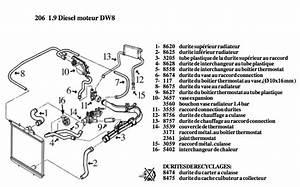 Circuit De Refroidissement Moteur : circuit refroidissement 206 circuti refroidissement 206 adam23 photos club club ~ Gottalentnigeria.com Avis de Voitures