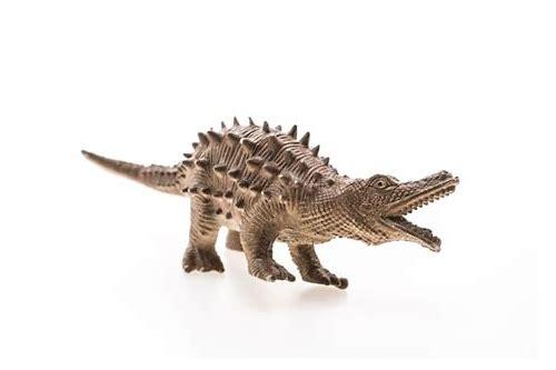 baixar grátis de fotos de crocodilo