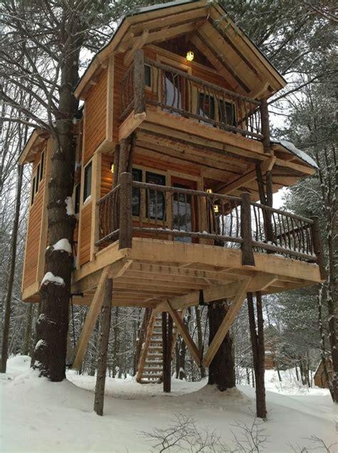 les cabanes dans les arbres architecture fantastique au