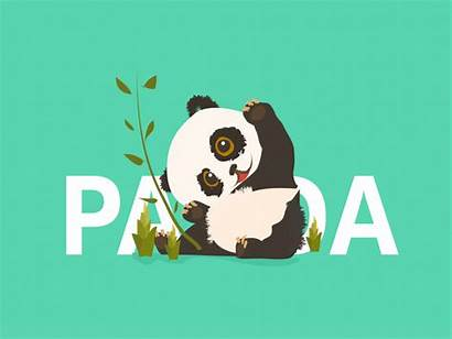 Panda Welcome Treasure National Dribbble Profile Follow