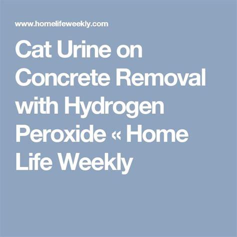 cat hardwood floor hydrogen peroxide meer dan 1000 idee 235 n urine huisdieren remover op