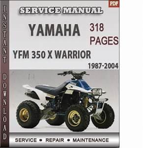 2008 2009 Roadstar Repair Service Factory Manual Download