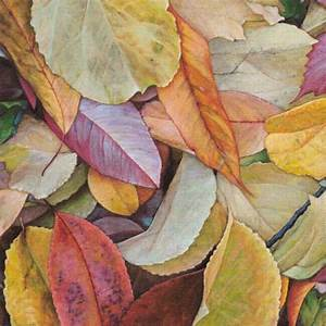 dan bacich leaf painting. | Nature 9: Leaves | Pinterest ...