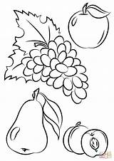 Coloring Fruit Fruits Autumn Salad Pages Fall Vegetables Printable Drawing Vegetable Draw Basket Preschool Colouring Sheets Different Supercoloring Outline Getdrawings sketch template