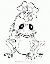 Coloring Pages Cute Toad Print Frogs Popular sketch template