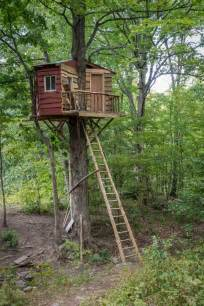 houses with porches 25 awesome tree houses activities