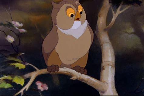 friend owl disney animals wiki fandom powered  wikia
