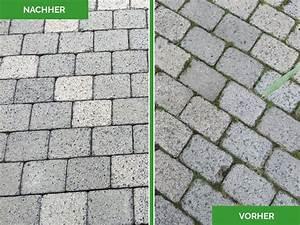 Reinigungsmittel Für Pflastersteine : michael w rle garten und landschaftsbau bruckm hl galabau ~ Yasmunasinghe.com Haus und Dekorationen
