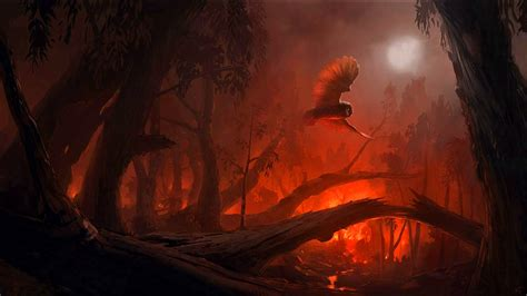 Dark Forest Background With Moon Bird Dark Moon Fantasy Forest Fire Owl Wallpapers