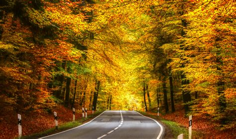 So if you are taking prep and have the signs and symptoms mentioned above, it is important Die Straße in den Herbst... Foto & Bild | jahreszeiten ...