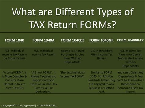 tax return preparation  guide  individuals cpa