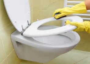 nettoyer ses wc conseils d entretien la adresse