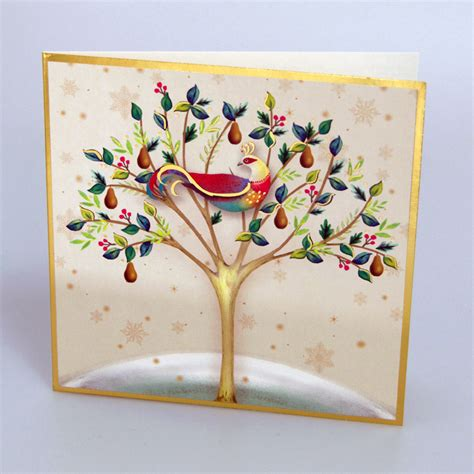 Pear tree stock photos and images. Cream Partridge in a Pear Tree Christmas Cards | Save the Children Shop