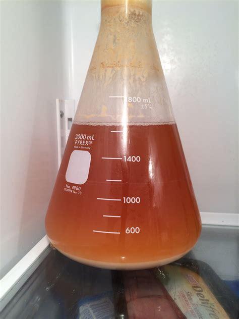 making  yeast starter  lager