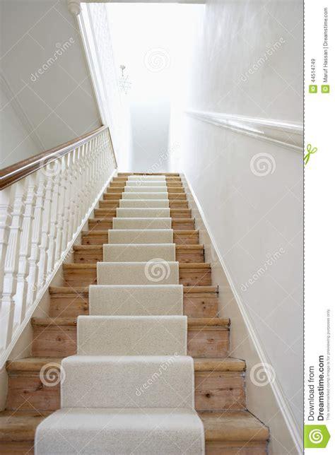 escalier avec le tapis blanc photo stock image 44514749