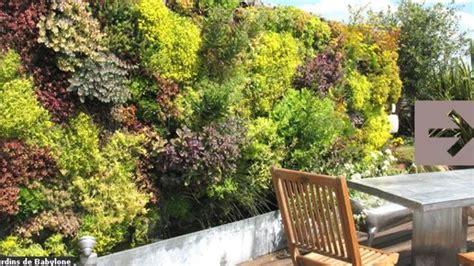 mur végétal stabilisé peinture mur couleur