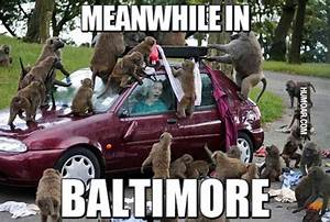 Memes Archives ... Funny Baltimore Riot Quotes