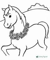 Horse Coloring Pages sketch template