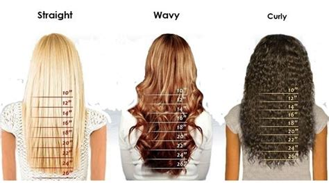 ideas  hair length chart  pinterest hair