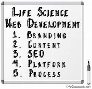 Life Science Web Development: Focus On 5 Key Qualities For ...