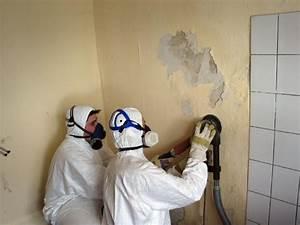 Mittel Gegen Wandschimmel : fachgerechte sanierung von schimmelbefall energie fachberater ~ Whattoseeinmadrid.com Haus und Dekorationen