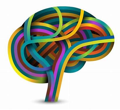 Brain Learning Based Theory Definition Education Funderstanding