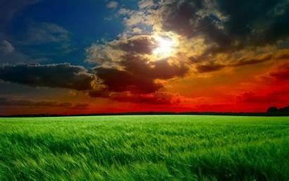 Sunset Widescreen 1440 900 Wallpapers Fields Pixelstalk