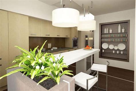 decorate kitchen  green indoor plants  save