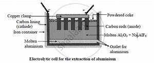 Draw A Neat  Well Labelled Diagram Of Electrolytic Cell