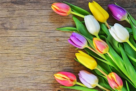 tips  buying cheap mothers day flowers gobankingrates
