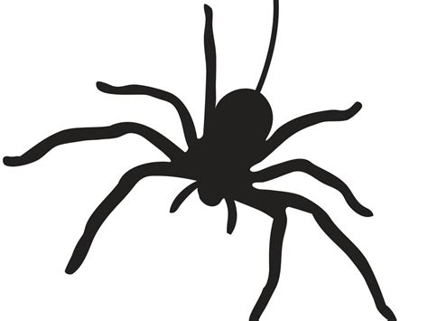 spider template 55 templates to take your pumpkin carving to a whole other level hgtv s decorating design