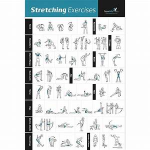 Stretching Flexibility Exercise Poster - Laminated