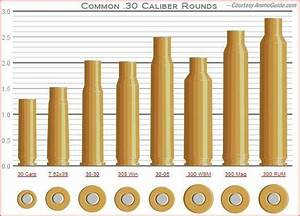 30 Cal  Cartridges  Another Diagram For Those Who Chamber