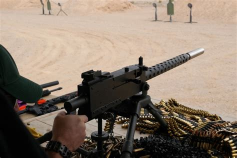 suppressed browning   truth  guns