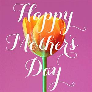 Happy Mother's Day Tulip Pictures, Photos, and Images for ...