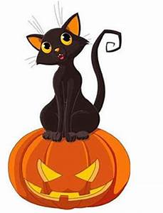 Cat Halloween Decoration Ideas You May Not Know About