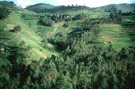 Paysages du Rwanda - Album photos - Le pays des mille collines