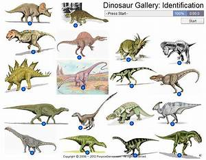 dinosaur pictures and names - Google Search   Dinosaurs ...